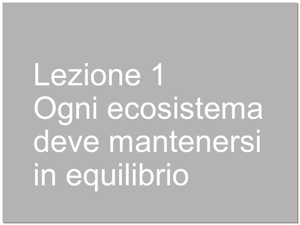 4 Lezione 1 Ogni ecosistema deve mantenersi in equilibrio