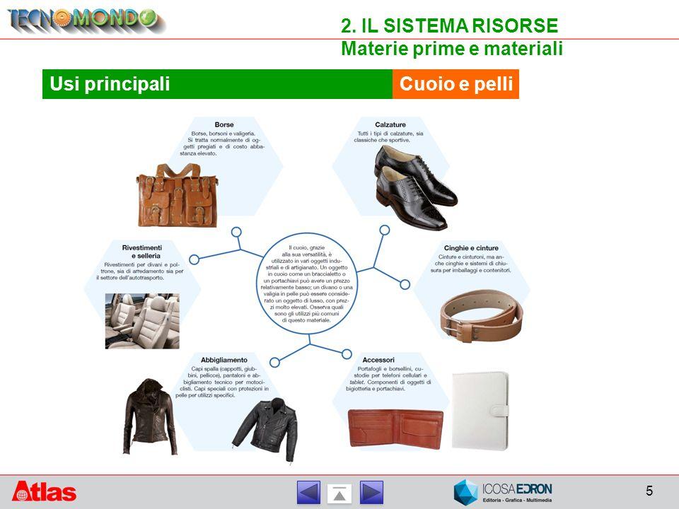 5 2. IL SISTEMA RISORSE Materie prime e materiali Cuoio e pelliUsi principali