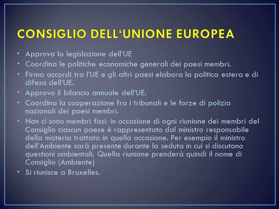 Approva la legislazione dell'UE Coordina le politiche economiche generali dei paesi membri. Firma accordi tra l'UE e gli altri paesi elabora la politi