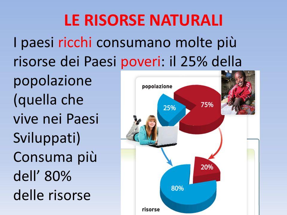 LE RISORSE NATURALI I paesi ricchi consumano molte più risorse dei Paesi poveri: il 25% della popolazione (quella che vive nei Paesi Sviluppati) Consuma più dell' 80% delle risorse