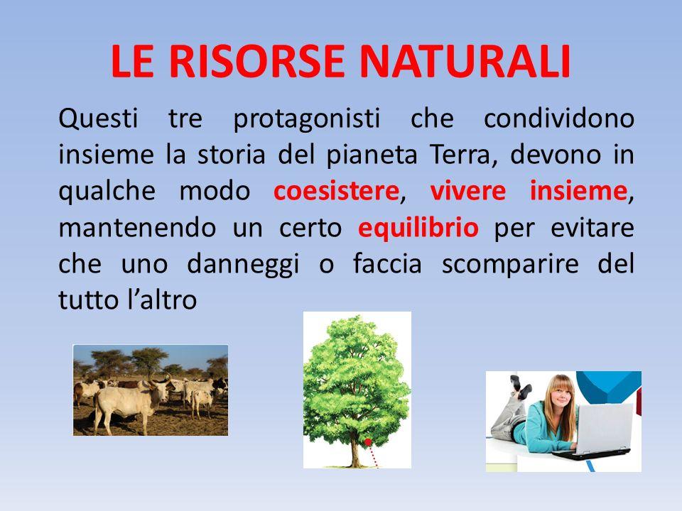 LE RISORSE NATURALI In un contesto di equilibri della creazione, il Pianeta Terra mette a disposizione delle risorse di cui è ricca, che chiameremo RISORSE NATURALI