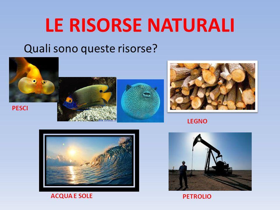 LE RISORSE NATURALI Quali sono queste risorse? PETROLIO LEGNO ACQUA E SOLE PESCI