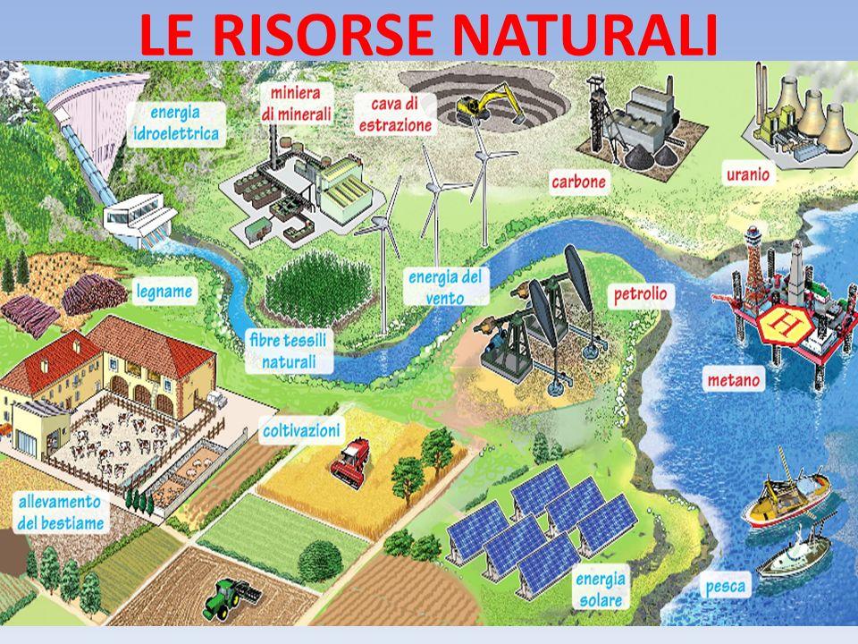 LE RISORSE NATURALI