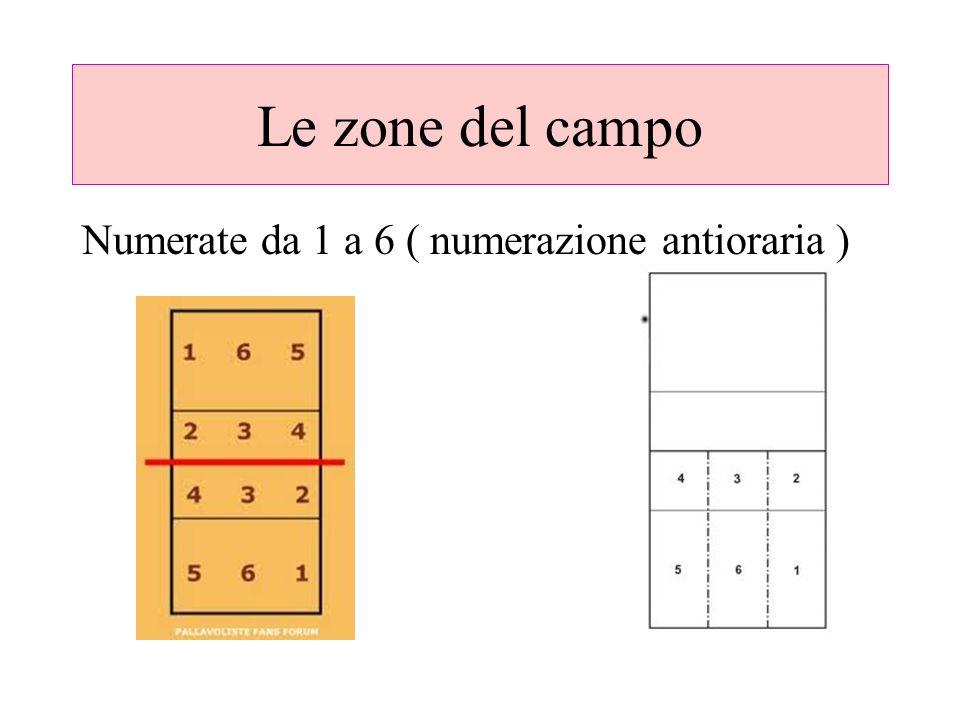 Le zone del campo Numerate da 1 a 6 ( numerazione antioraria )