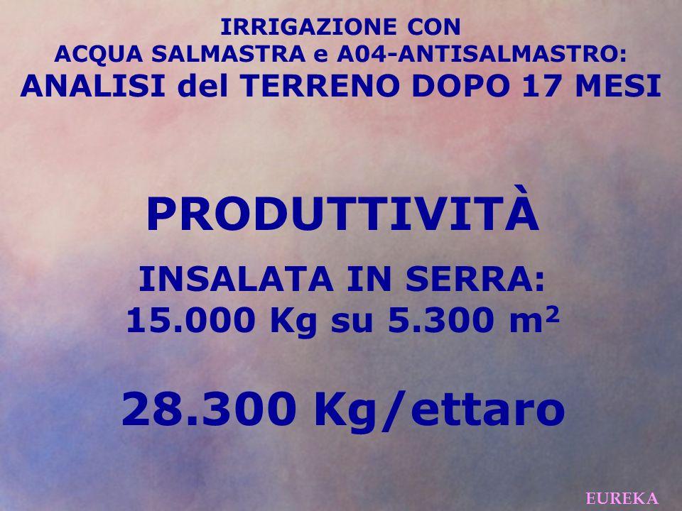 IRRIGAZIONE CON ACQUA SALMASTRA e A04-ANTISALMASTRO: ANALISI del TERRENO DOPO 17 MESI PRODUTTIVITÀ INSALATA IN SERRA: 15.000 Kg su 5.300 m 2 28.300 Kg/ettaro EUREKA