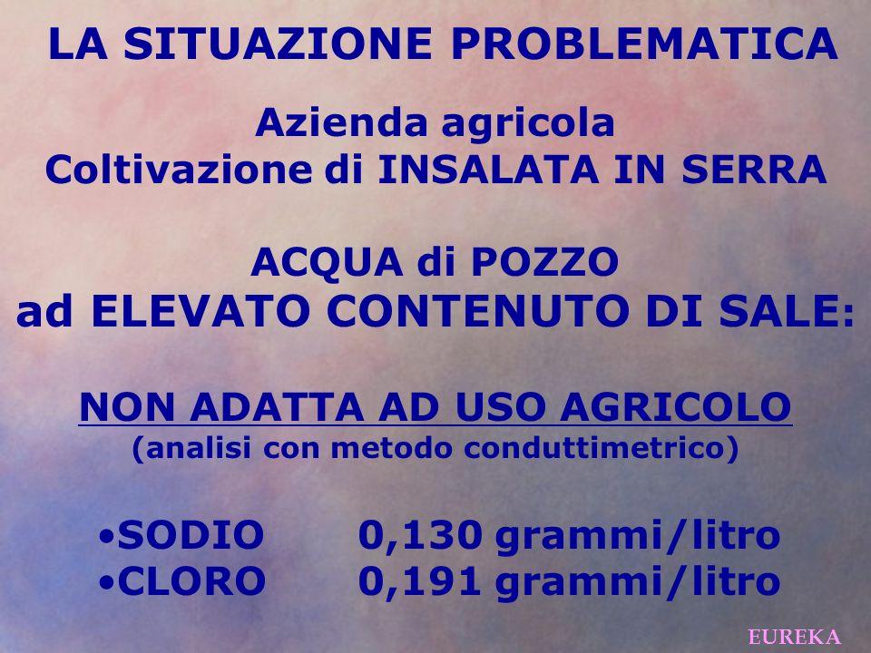 LA SITUAZIONE PROBLEMATICA Azienda agricola Coltivazione di INSALATA IN SERRA ACQUA di POZZO ad ELEVATO CONTENUTO DI SALE : NON ADATTA AD USO AGRICOLO (analisi con metodo conduttimetrico) SODIO0,130 grammi/litro CLORO0,191 grammi/litro EUREKA