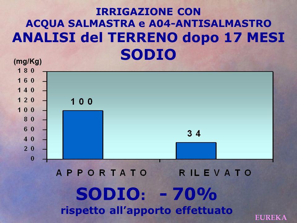 IRRIGAZIONE CON ACQUA SALMASTRA e A04-ANTISALMASTRO ANALISI del TERRENO dopo 17 MESI SODIO (mg/Kg) EUREKA SODIO : - 70% rispetto all'apporto effettuato