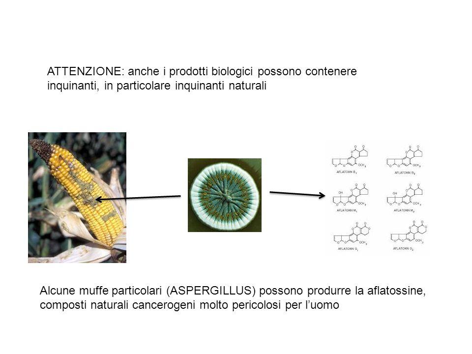 ATTENZIONE: anche i prodotti biologici possono contenere inquinanti, in particolare inquinanti naturali Alcune muffe particolari (ASPERGILLUS) possono