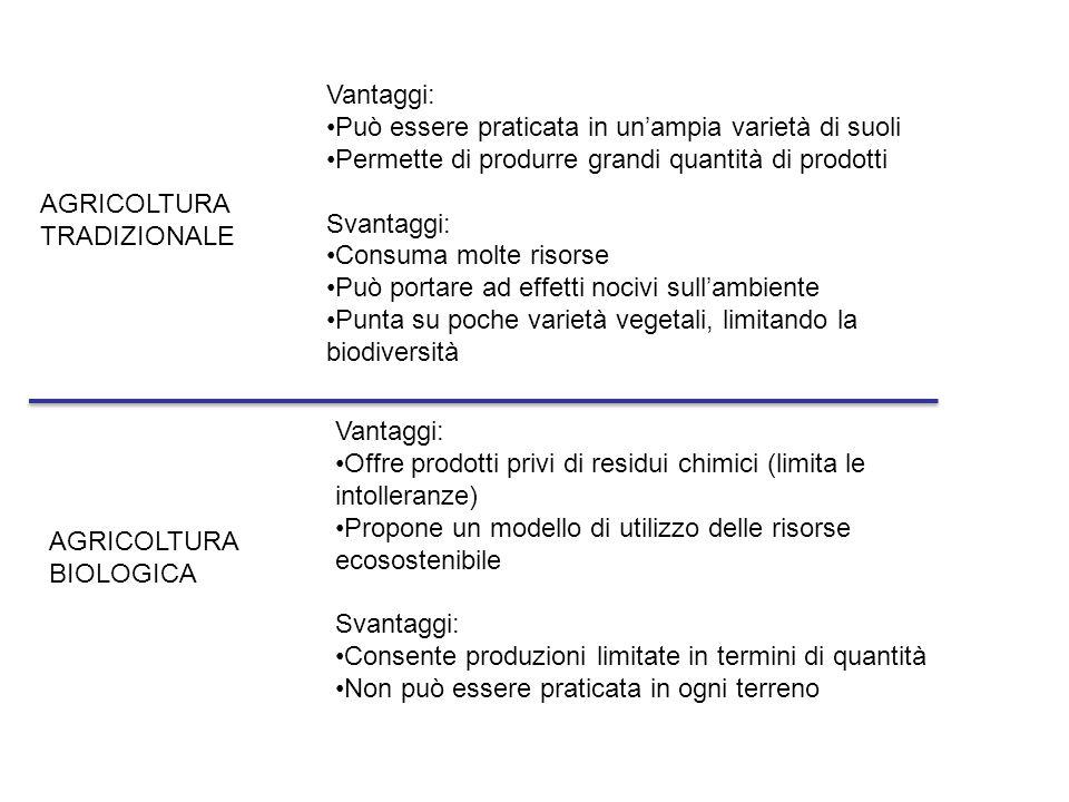 AGRICOLTURA TRADIZIONALE Vantaggi: Può essere praticata in un'ampia varietà di suoli Permette di produrre grandi quantità di prodotti Svantaggi: Consu