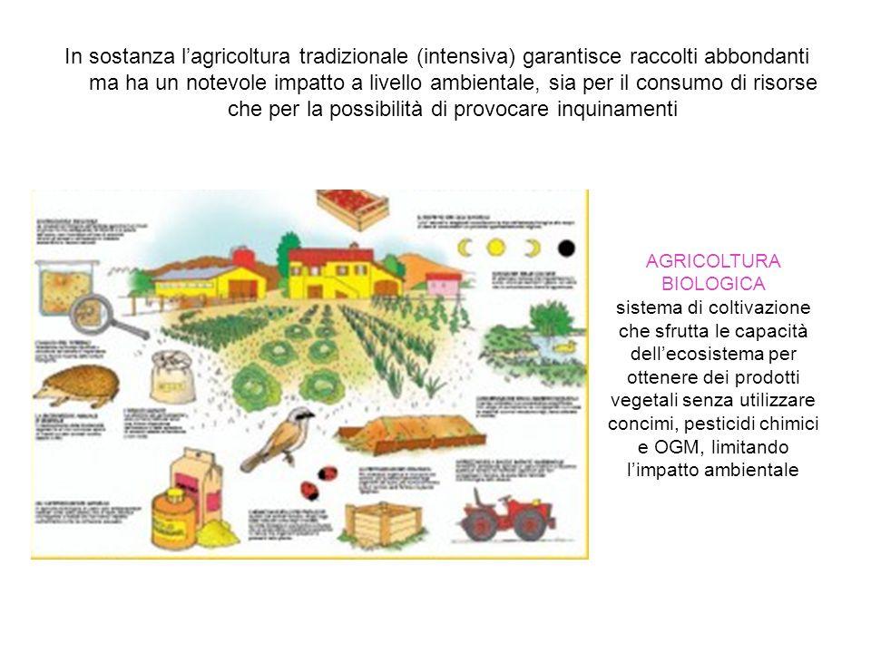 In sostanza l'agricoltura tradizionale (intensiva) garantisce raccolti abbondanti ma ha un notevole impatto a livello ambientale, sia per il consumo d