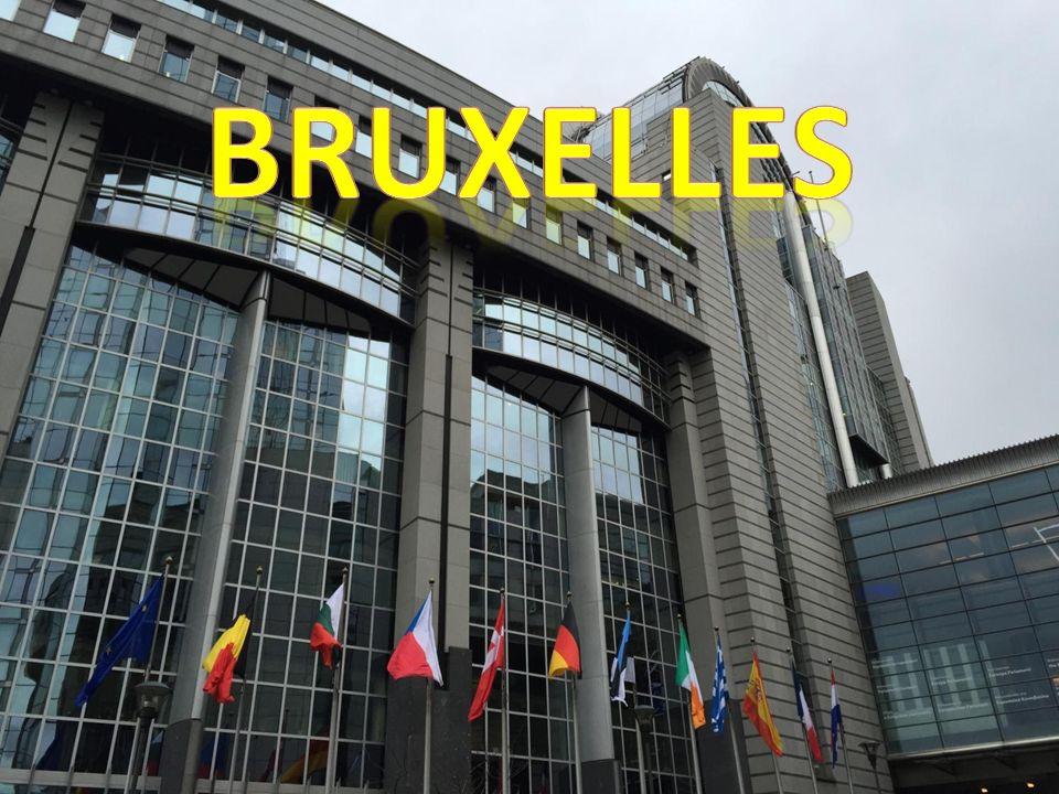 EURO 19 Paesi hanno l'euro (Lituania 2015),9 no Introdotto nel 1 Gennaio del '99 Iniziato a circolare nel 2002 I candidati ad adottare l'euro sono la Bulgaria e Rep.