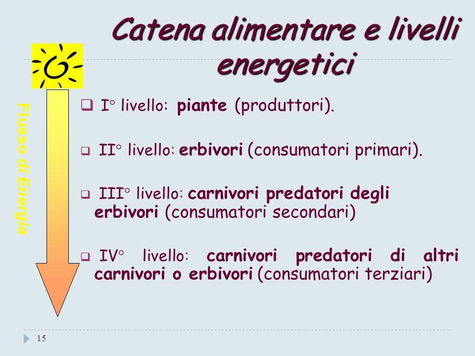 Gli anelli o livelli della catena alimentare 14 Energia entrante Energia uscente Piante Erbivori pascolanti Carnivori predatori di erbivori Carnivori predatori di erbivori e carnivori AMBIENTE
