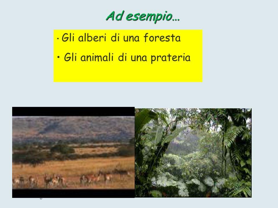 7 COMPONENTE BIOTICA E' la parte biologica dell'Ecosistema E' formata da tutti gli organismi animali e vegetali
