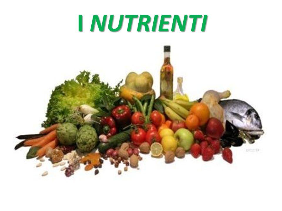 Provengono dal mondo vegetale (olio d'oliva, di soia, di mais, di arachide ecc.), dal mondo animale (grassi, burro, lardo, strutto, olio di pesce) e dall'industria (margarine).