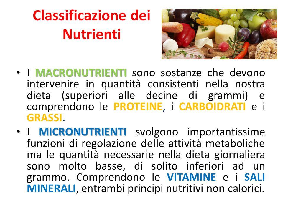 Classificazione dei Nutrienti MACRONUTRIENTI I MACRONUTRIENTI sono sostanze che devono intervenire in quantità consistenti nella nostra dieta (superiori alle decine di grammi) e comprendono le PROTEINE, i CARBOIDRATI e i GRASSI.