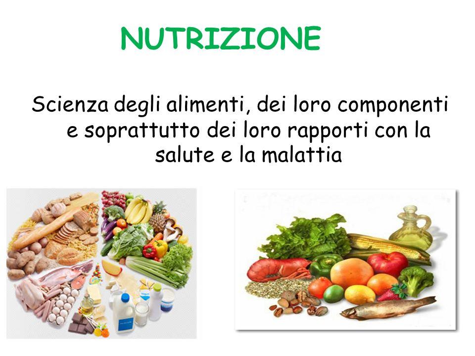 I NUTRIENTI I principi nutritivi sono sostanze assunte durante il processo di nutrizione e sono indispensabili alla vita e al metabolismo degli esseri viventi.