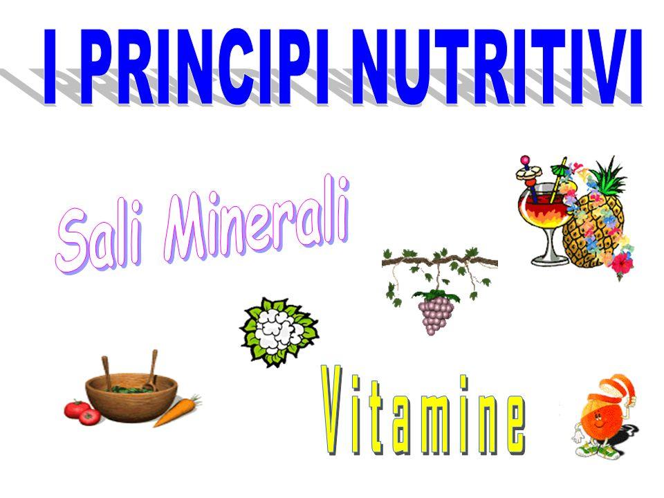 FUNZIONI I principi nutritivi svolgono diverse FUNZIONI all'interno dell'organismo umano.