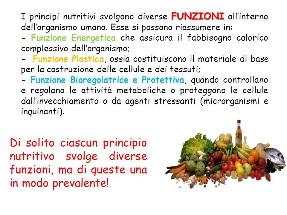 I PRINCIPI NUTRITIVI PLASTICI (PROTEINE) BIOREGOLATORI (VITAMINE, SALI MINERALI) ENERGETICI (GRASSI, CARBOIDRATI)