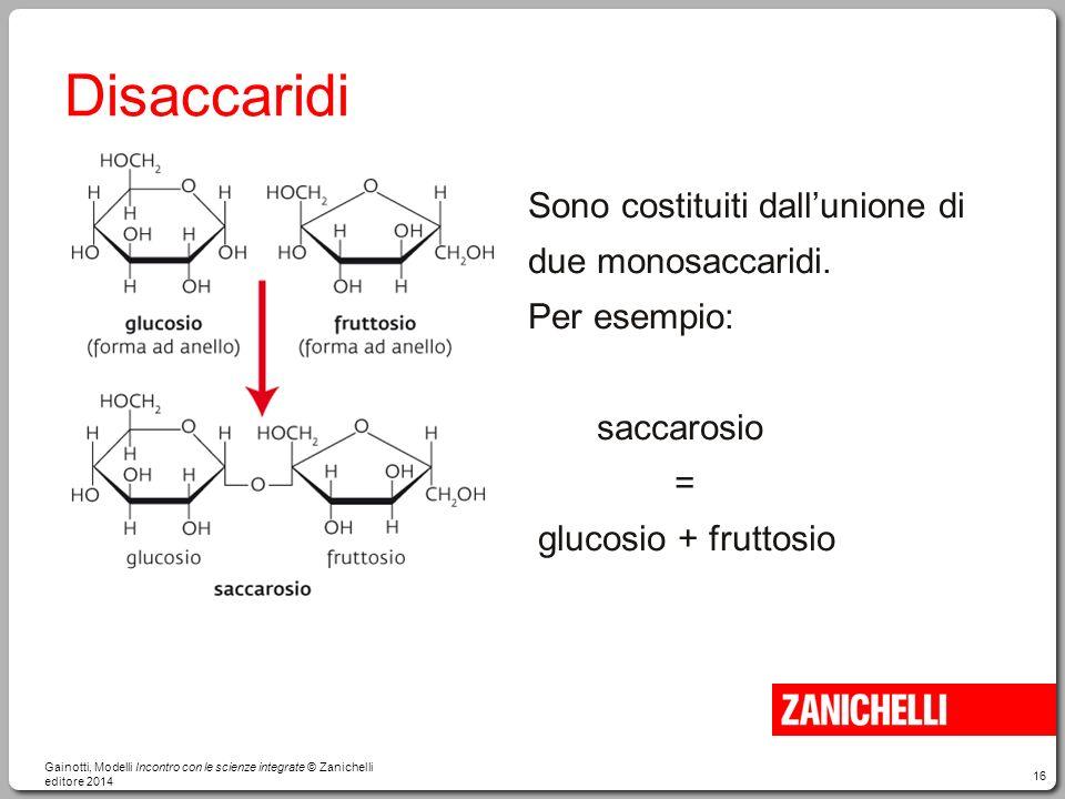 16 Disaccaridi Sono costituiti dall'unione di due monosaccaridi. Per esempio: saccarosio = glucosio + fruttosio Gainotti, Modelli Incontro con le scie
