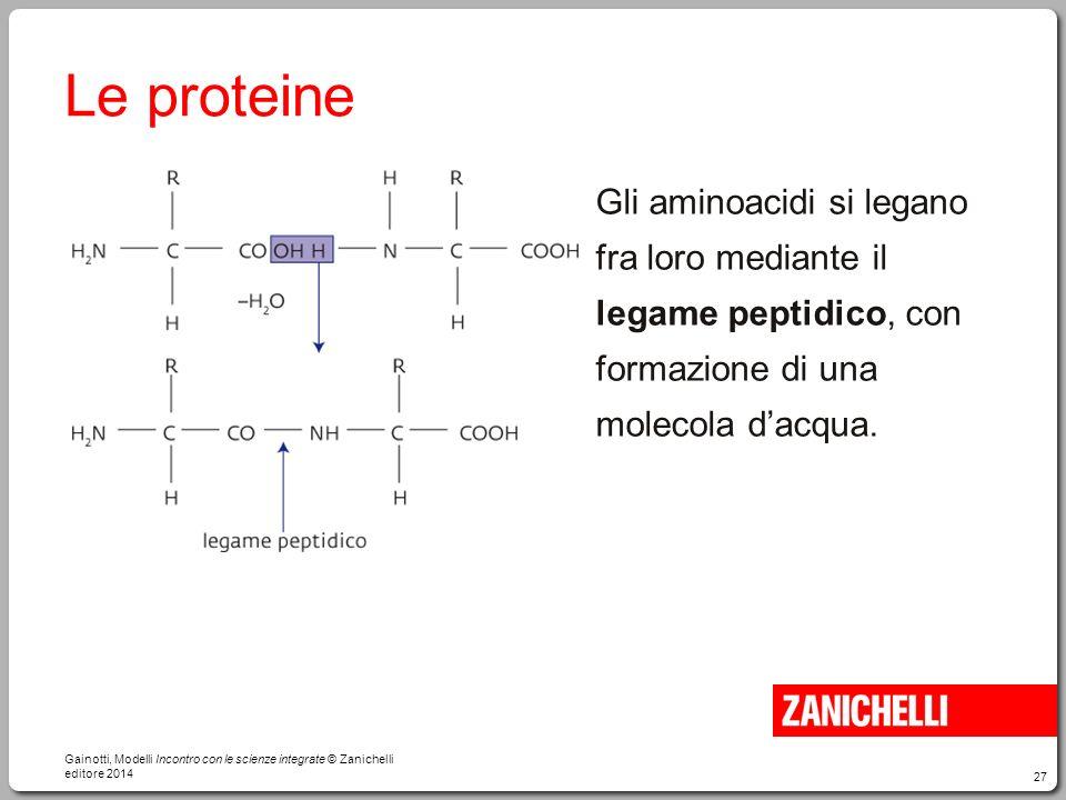 27 Le proteine Gli aminoacidi si legano fra loro mediante il legame peptidico, con formazione di una molecola d'acqua. Gainotti, Modelli Incontro con