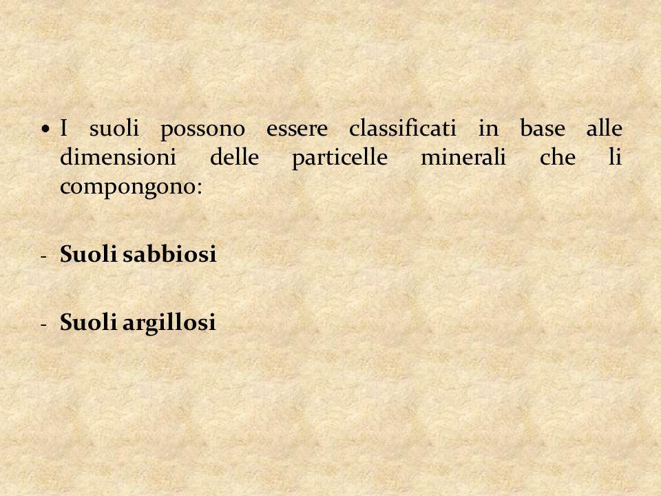 I suoli possono essere classificati in base alle dimensioni delle particelle minerali che li compongono: - Suoli sabbiosi - Suoli argillosi