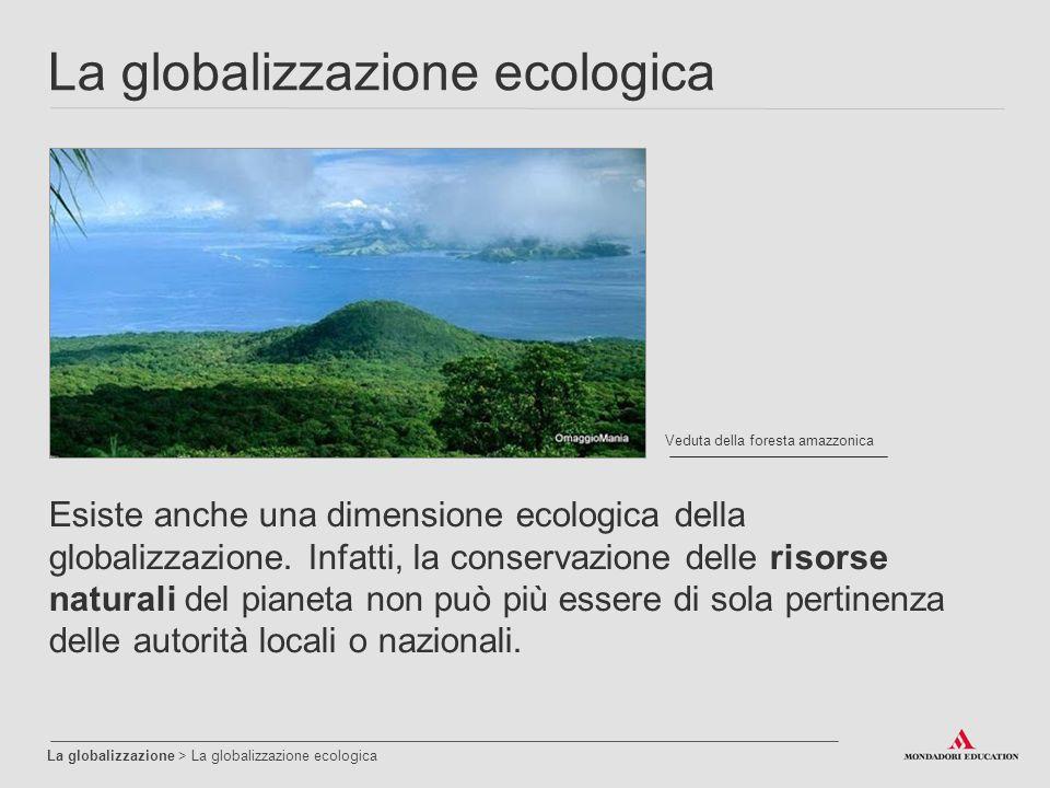 La globalizzazione ecologica La globalizzazione > La globalizzazione ecologica Veduta della foresta amazzonica Esiste anche una dimensione ecologica della globalizzazione.