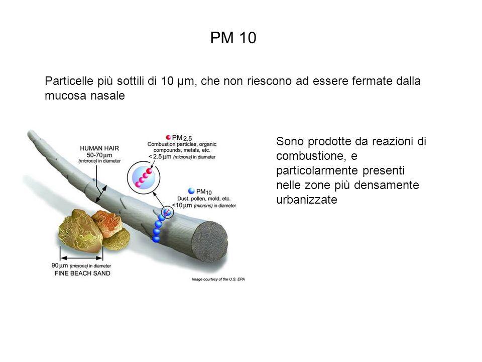 PM 10 Particelle più sottili di 10 µm, che non riescono ad essere fermate dalla mucosa nasale Sono prodotte da reazioni di combustione, e particolarmente presenti nelle zone più densamente urbanizzate