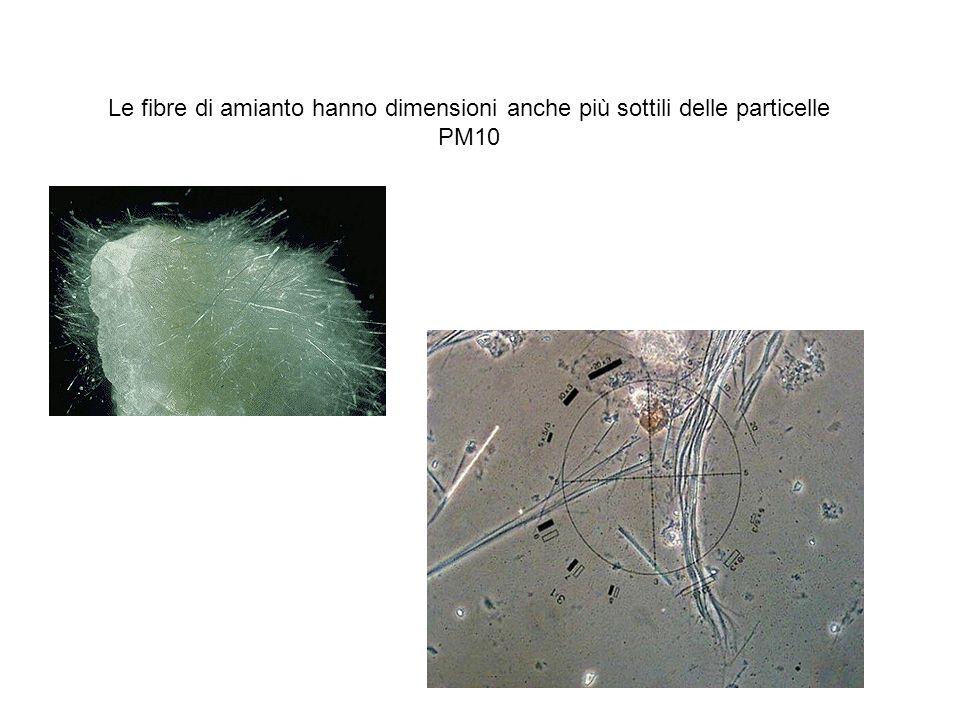 Le fibre di amianto hanno dimensioni anche più sottili delle particelle PM10