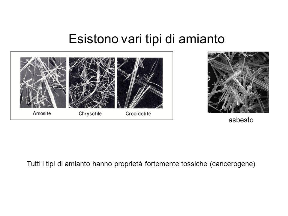 Esistono vari tipi di amianto asbesto Tutti i tipi di amianto hanno proprietà fortemente tossiche (cancerogene)