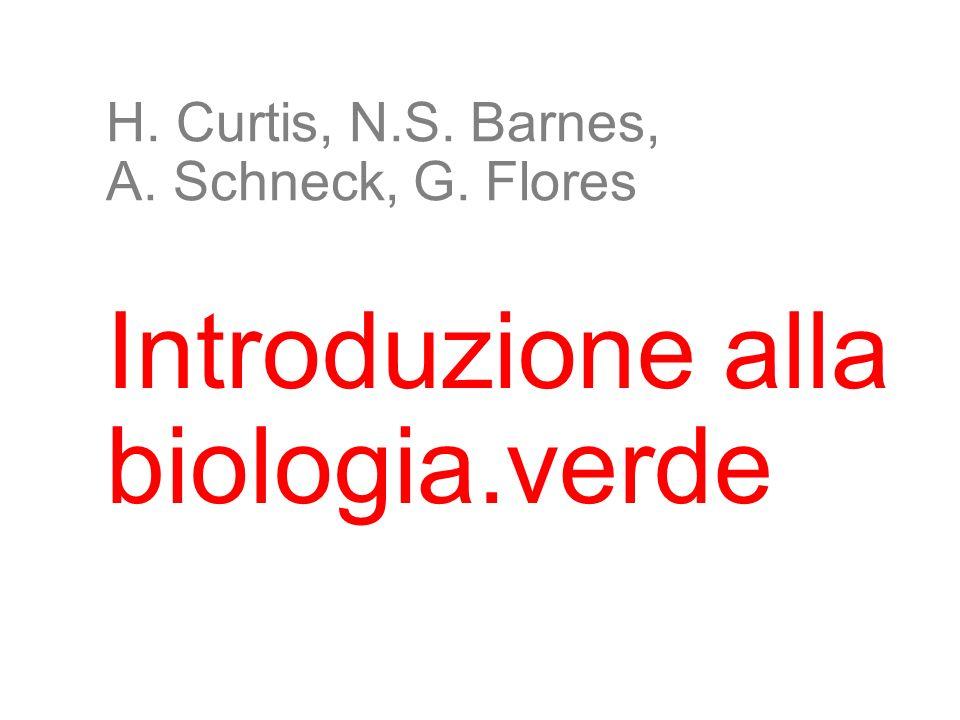 2 H. Curtis, N.S. Barnes, A. Schneck, G. Flores Introduzione alla biologia.verde