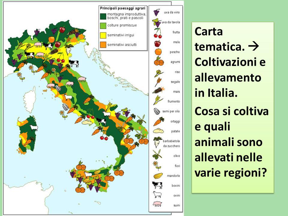 Carta tematica. Coltivazioni e allevamento in Italia.