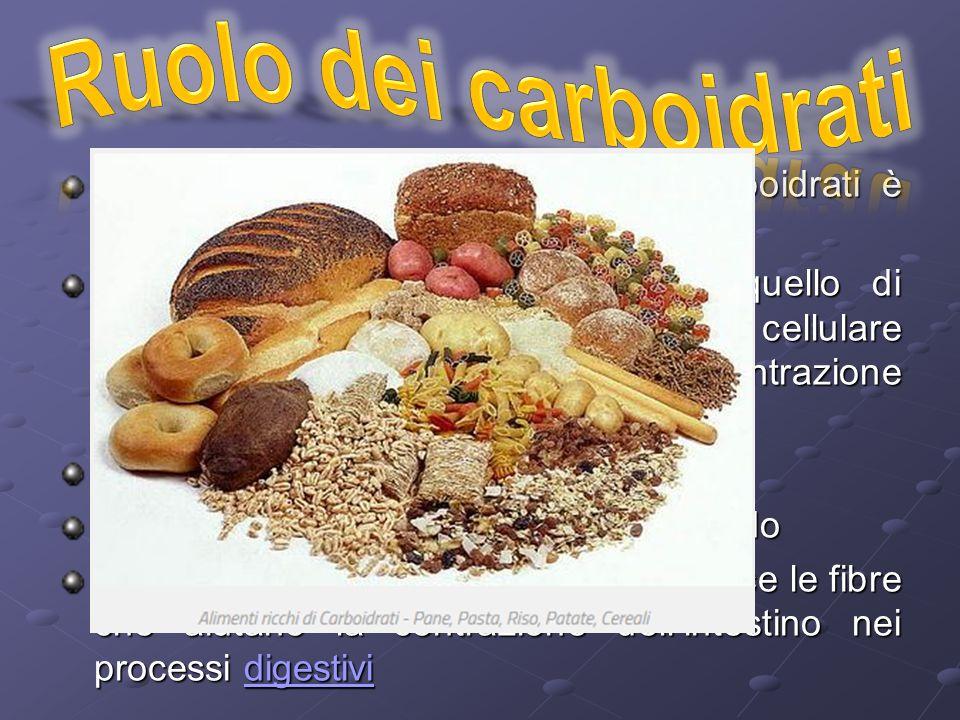 Come abbiamo visto il ruolo dei carboidrati è molteplice Nel corpo umano il principale è quello di produrre energia per il metabolismo cellulare (come abbiamo già visto nella contrazione muscolare) Il glicogeno svolge un ruolo di riserva La principale fonte di carboidrati è l'amido La cellulosa è importante perché fornisce le fibre che aiutano la contrazione dell'intestino nei processi digestivi digestivi