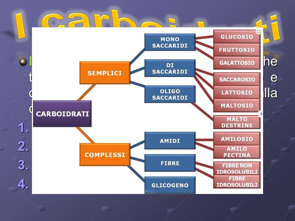 I carboidrati cono sostanze organiche ternarie formate da carbonio, idrogeno e ossigeno e si distinguono in base alla complessità della molecola in: 1.M onosaccaridi 2.D isaccaridi 3.O ligosaccaridi 4.P olisaccaridi