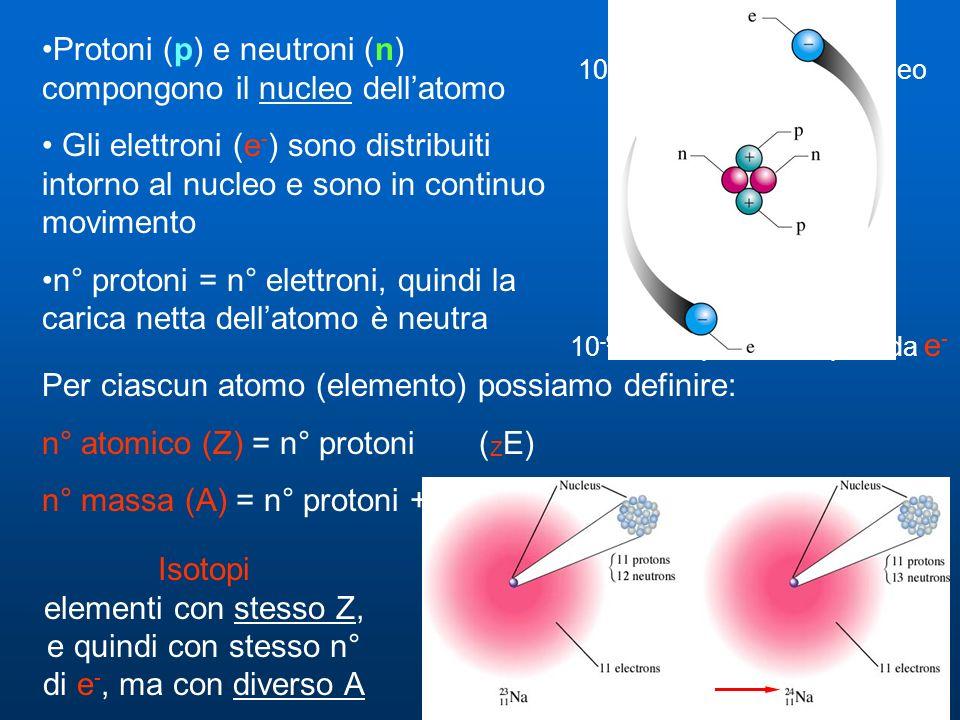 Protoni (p) e neutroni (n) compongono il nucleo dell'atomo Gli elettroni (e - ) sono distribuiti intorno al nucleo e sono in continuo movimento n° protoni = n° elettroni, quindi la carica netta dell'atomo è neutra 10 -9 m = spazio occupato da e - 10 -14 m = diametro del nucleo Per ciascun atomo (elemento) possiamo definire: n° atomico (Z) = n° protoni ( Z E) n° massa (A) = n° protoni + n° neutroni ( A E) Isotopi elementi con stesso Z, e quindi con stesso n° di e -, ma con diverso A