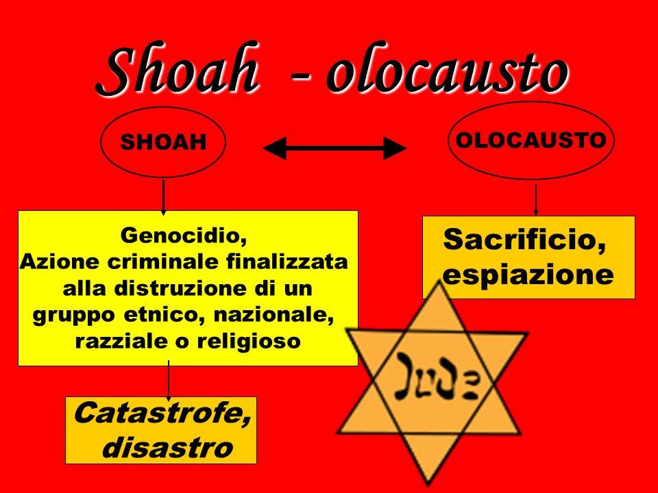 Le cause della shoah Gli ebrei, secondo i piani dei gerarchi nazisti, avrebbero dovuto scomparire dalla faccia della terra.