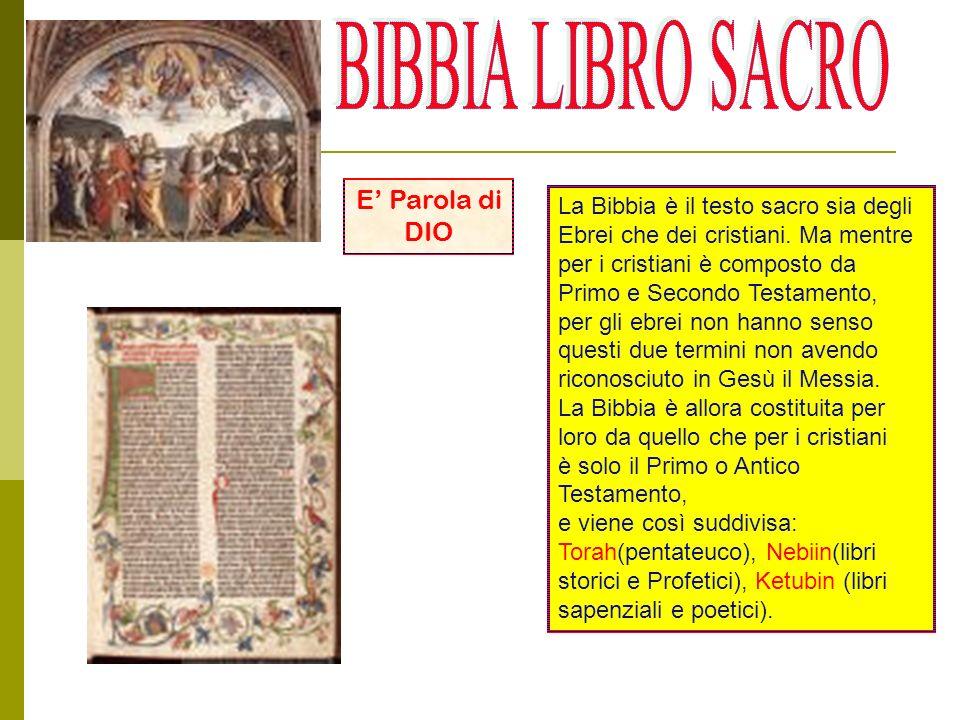 La Bibbia è il testo sacro sia degli Ebrei che dei cristiani.