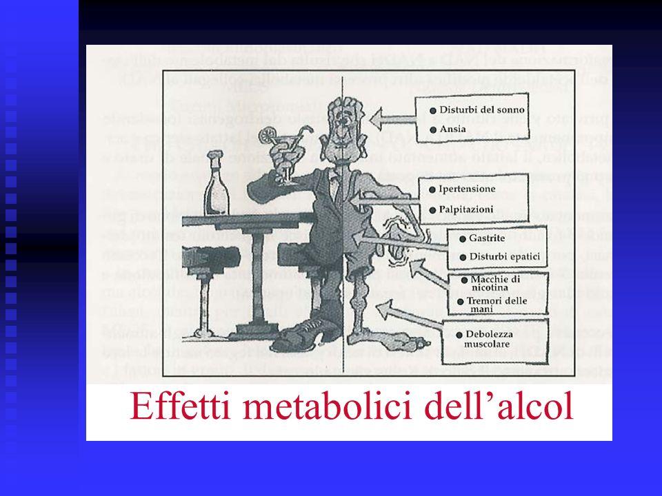 Effetti metabolici dellalcol