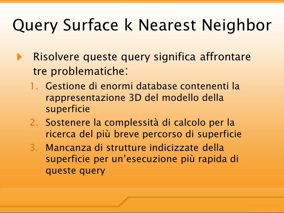 Query Surface k Nearest Neighbor Risolvere queste query significa affrontare tre problematiche : 1.Gestione di enormi database contenenti la rappresentazione 3D del modello della superficie 2.Sostenere la complessità di calcolo per la ricerca del più breve percorso di superficie 3.Mancanza di strutture indicizzate della superficie per unesecuzione più rapida di queste query