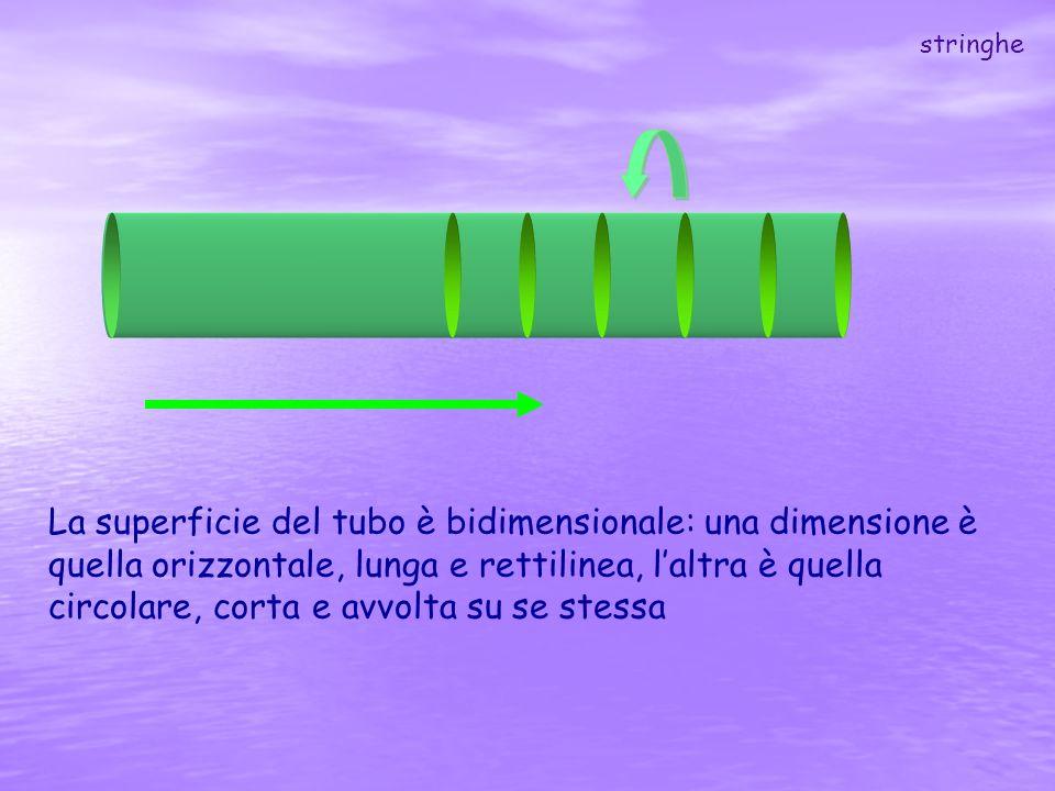 La superficie del tubo è bidimensionale: una dimensione è quella orizzontale, lunga e rettilinea, laltra è quella circolare, corta e avvolta su se ste