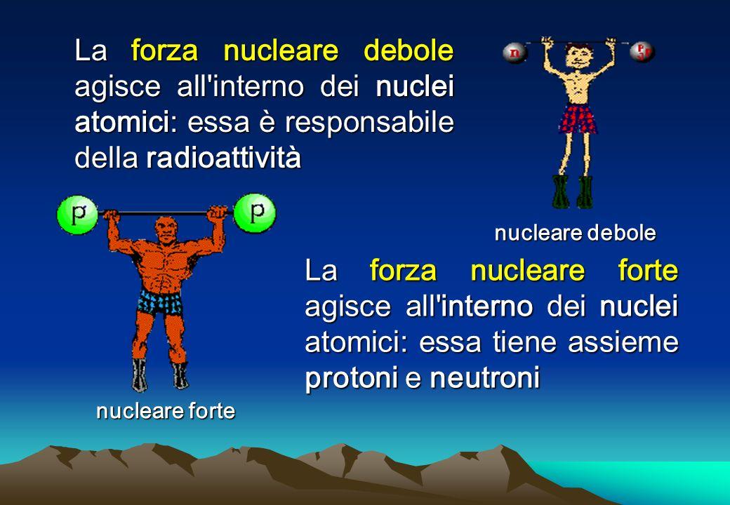 nucleare forte La forza nucleare debole agisce all interno dei nuclei atomici: essa è responsabile della radioattività La forza nucleare forte agisce all interno dei nuclei atomici: essa tiene assieme protoni e neutroni nucleare debole