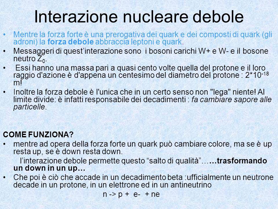 Interazione nucleare debole Mentre la forza forte è una prerogativa dei quark e dei composti di quark (gli adroni) la forza debole abbraccia leptoni e