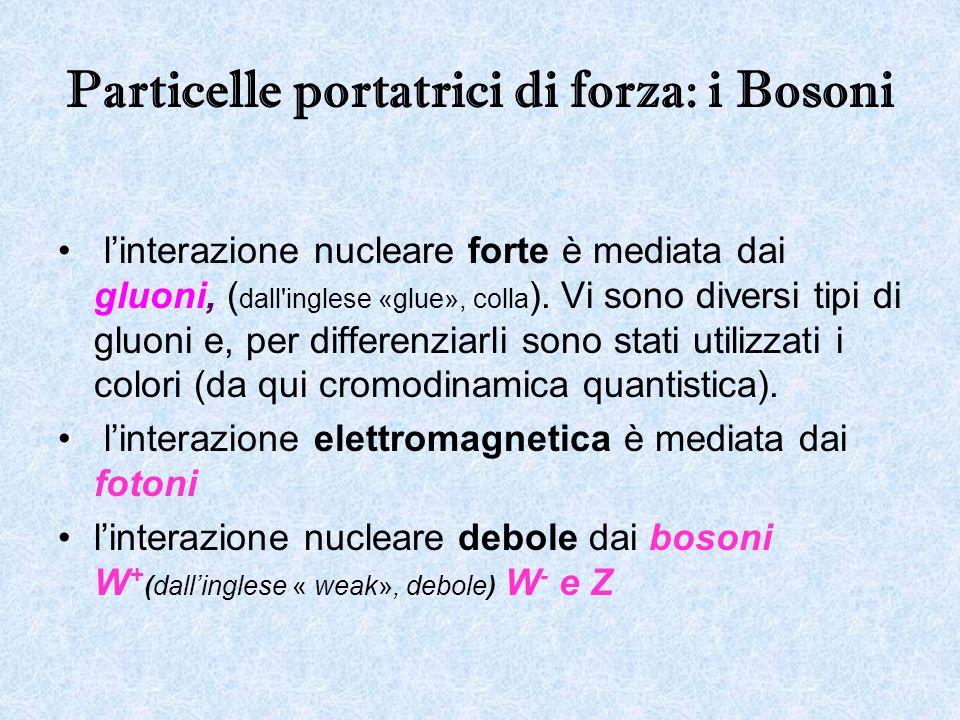 Particelle portatrici di forza: i Bosoni linterazione nucleare forte è mediata dai gluoni, ( dall'inglese «glue», colla ). Vi sono diversi tipi di glu