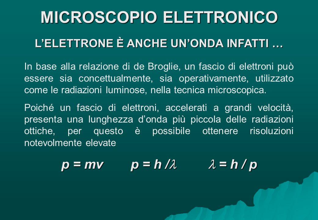 LELETTRONE È ANCHE UNONDA INFATTI … In base alla relazione di de Broglie, un fascio di elettroni può essere sia concettualmente, sia operativamente, u