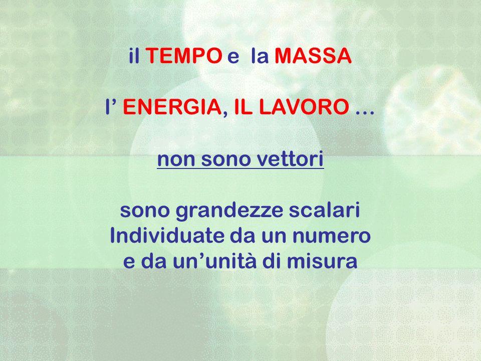 il TEMPO e la MASSA l ENERGIA, IL LAVORO … non sono vettori sono grandezze scalari Individuate da un numero e da ununità di misura