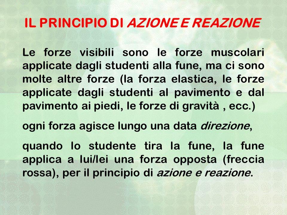 Le forze visibili sono le forze muscolari applicate dagli studenti alla fune, ma ci sono molte altre forze (la forza elastica, le forze applicate dagl