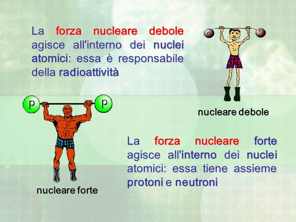 nucleare forte La forza nucleare debole agisce all'interno dei nuclei atomici: essa è responsabile della radioattività La forza nucleare forte agisce