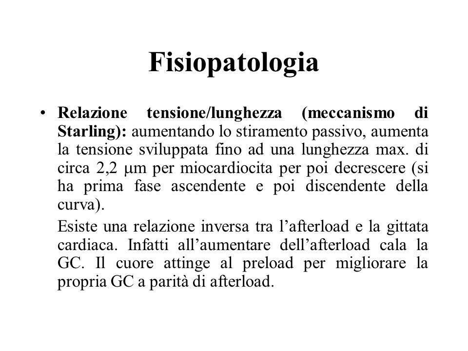 Fisiopatologia Relazione tensione/lunghezza (meccanismo di Starling): aumentando lo stiramento passivo, aumenta la tensione sviluppata fino ad una lun