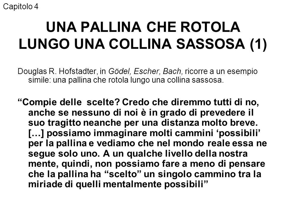 UNA PALLINA CHE ROTOLA LUNGO UNA COLLINA SASSOSA (1) Douglas R.