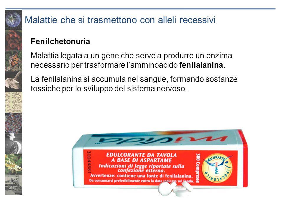 Malattie che si trasmettono con alleli recessivi Fenilchetonuria Malattia legata a un gene che serve a produrre un enzima necessario per trasformare l