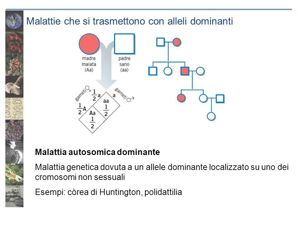 Malattie che si trasmettono con alleli dominanti Malattia autosomica dominante Malattia genetica dovuta a un allele dominante localizzato su uno dei c